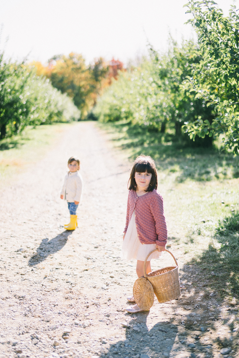 apple picking family portrait session maine